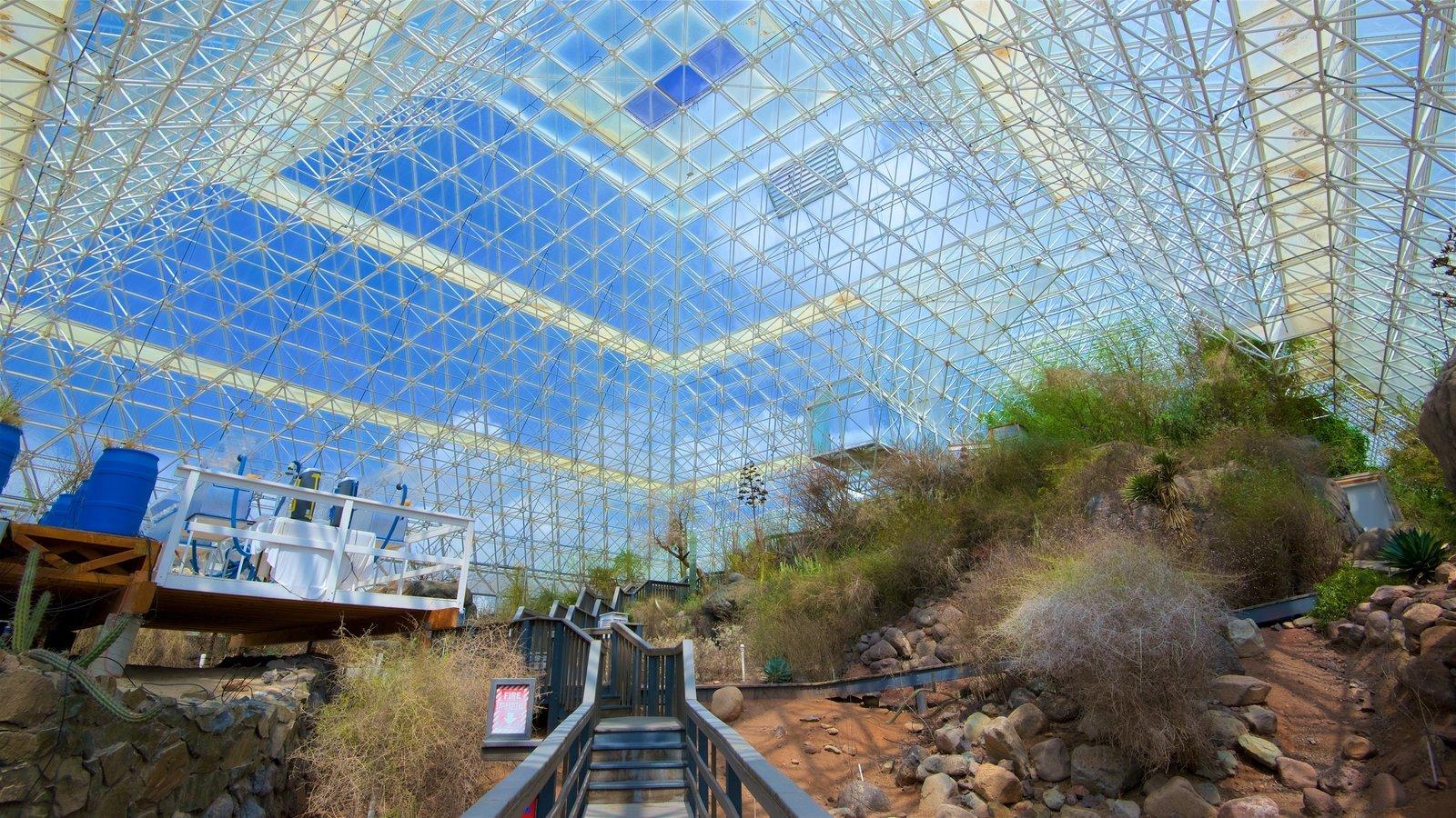 Ландшафт под куполом Биосферы-2