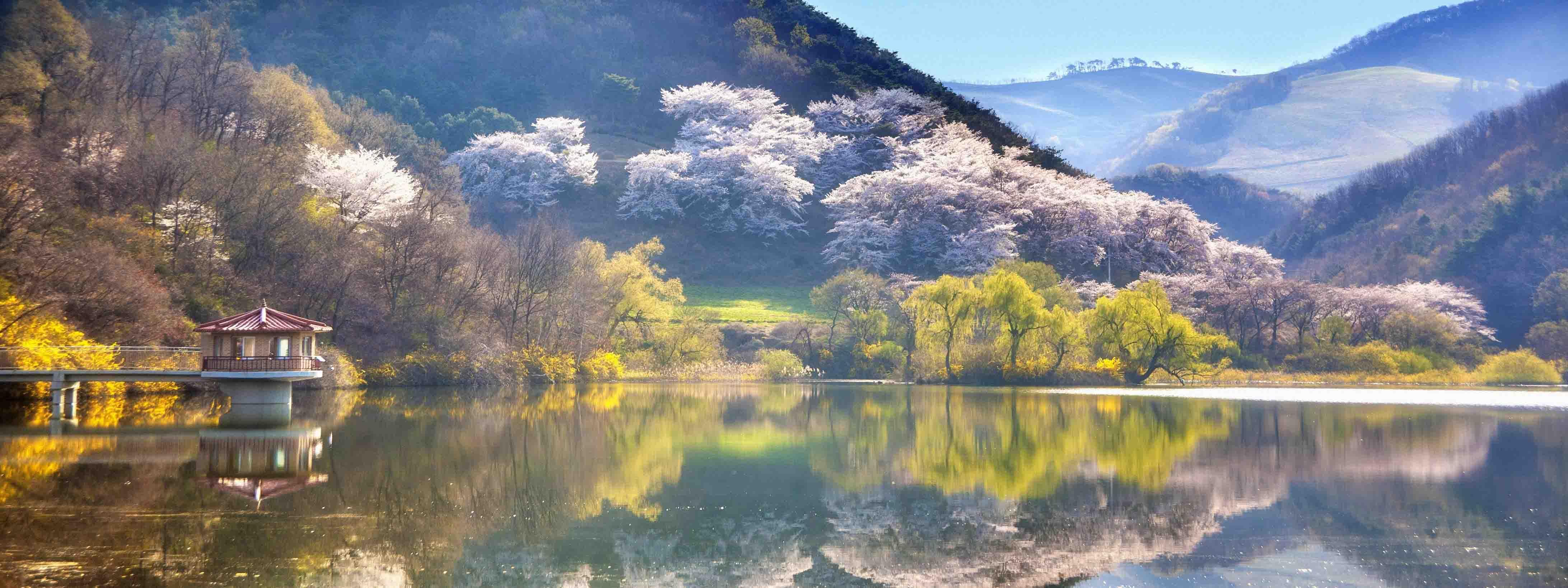 Живописные горы Южной Кореи