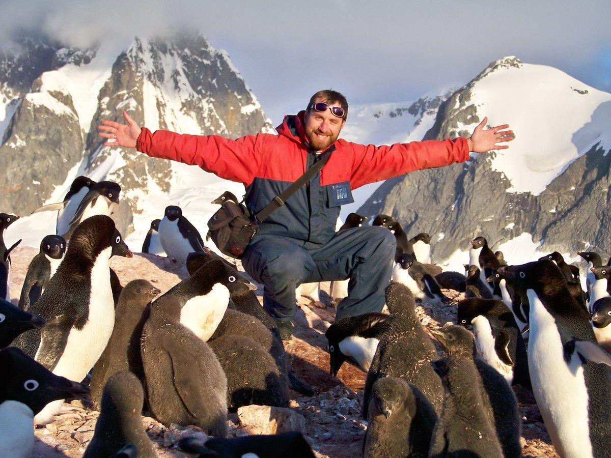 Пингвины и человек