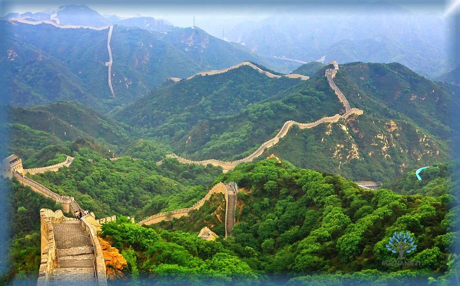 Вид на Китайскую стену