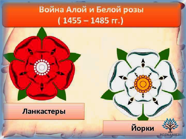 Война Роз