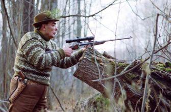 Брежневский заяц и его история