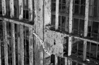 Стэнфордский тюремный эксперимент: свобода мысли лишь иллюзия