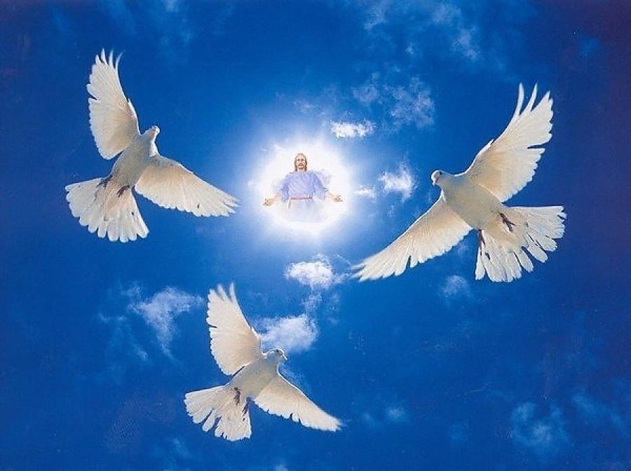 Голубь - символ духа