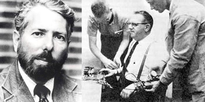 Подчинение превыше совести: эксперимент Милгрэма