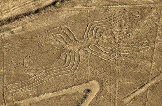 Один из загадочных геоглифов Наска