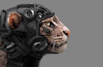 кошка – агент спецслужб